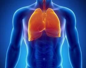 Хвороби легенів і їх лікування народними засобами фото