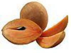 Фрукт саподілла - корисні властивості, як їдять, калорійність фото