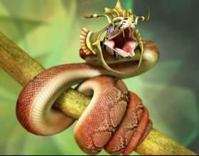 До чого сниться змія фото