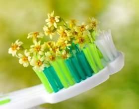 Як можна зміцнити зуби і ясна народними засобами фото