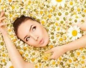 Комора краси - маска з квіток ромашки для обличчя та волосся фото