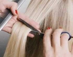 Коли і в який день краще стригти волосся згідно з місячним календарем фото