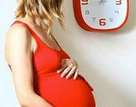 Краснуха перед вагітністю фото