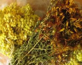 Лікування захворювань печінки лікарськими травами фото