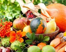 Місячний календар садівника і городника північного заходу 2017: таблиця. Сприятливі і несприятливі дні для посадки полуниці і овочів в районі північного заходу в 2017 році фото