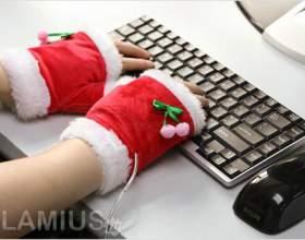 Новий рік 2013 інтернеті фото