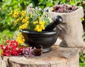 Підбірка найефективніших зборів трав для лікування подагри - рецепти фото