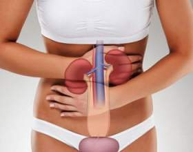 Рецепти народної медицини при захворюванні нирок фото