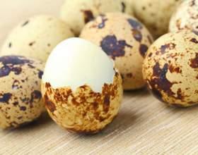 Скільки варити яйця перепелині? Як варити перепелині яйця круто, для дитини, щоб легко чистилися? фото